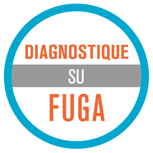diagnostique su fuga